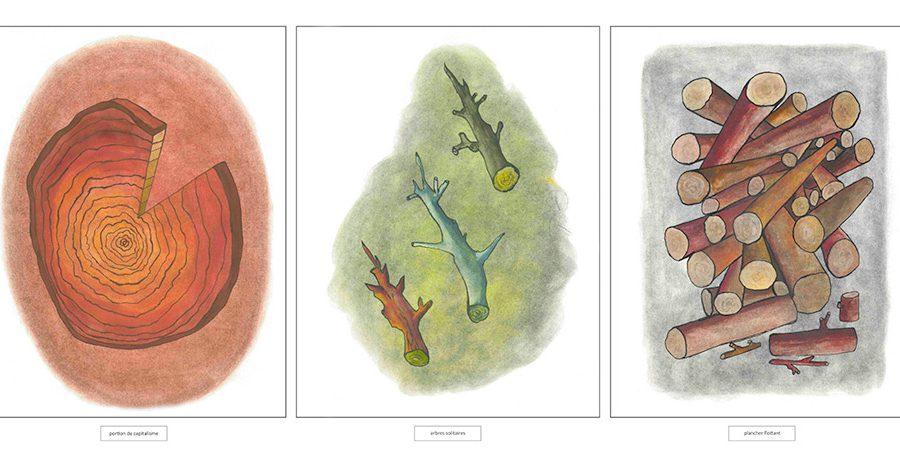 « Se déboiser » : Portion de capitalisme/Arbres solitaires/Plancher flottant, 2012. Impression numérique à partir de dessins exécutés au pastel, 126 X 52 cm.